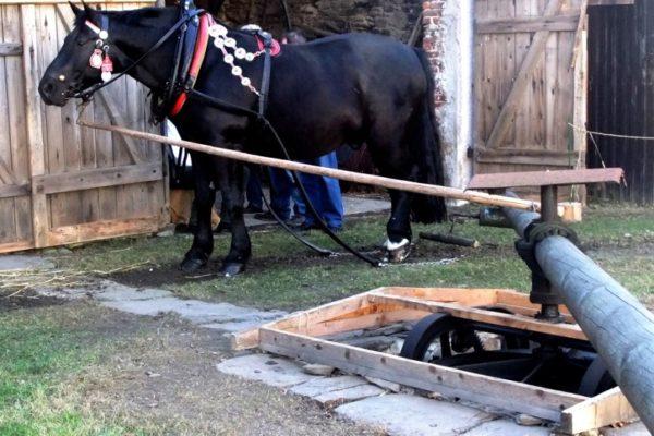 Pferdegöpel