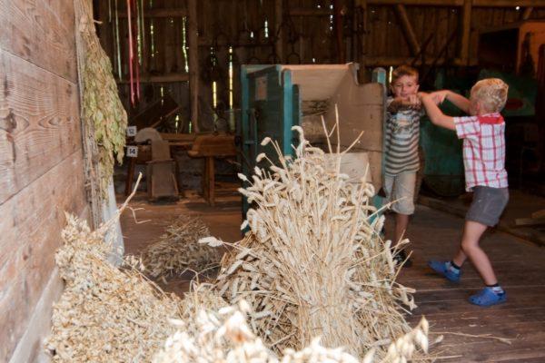 Getreide reinigen